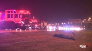 Fatal collision between car and moose on Anthony Henday Drive (00:29)