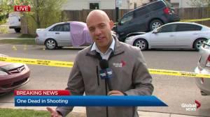 Fatal shooting in Taradale
