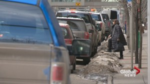 Calgary councillor mulls ideas to keep city sidewalks clear
