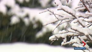 Weather woes continue in Calgary as snow keeps falling well into spring
