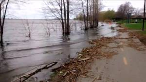 Montreal walking trail flooded by swollen waterway