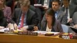 Nikki Haley slams Russia over response to Syria, criticizes Russia's UN ambassador