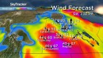 Saskatoon weather outlook: brief break from wild winds, but they'll be back