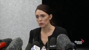 Jacinda Ardern calls New Zealand a 'blueprint on what not to do' on gun laws (00:34)