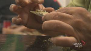 Maritime doctors urge safety, education as recreational cannabis legalization nears