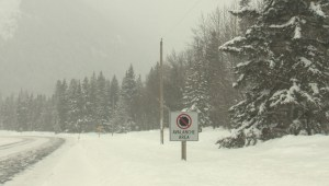 Avalanche control remains top priority at southern Alberta ski resort