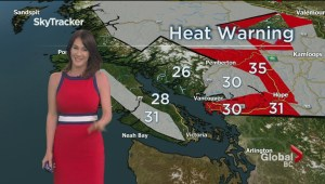 BC Evening Weather Forecast: Jun 19