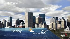 Edmonton early morning weather forecast: Thursday, June 13, 2019