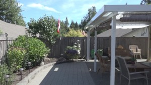 Strata fines senior $50 for hanging Canadian flag on his property