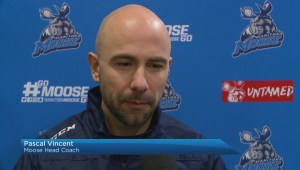 Manitoba Moose Pascal Vincent Named Coach Of The Year