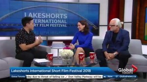 Lakeshorts International Short Film Festival back for 8th year