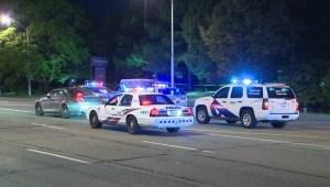 Woman dead after hit-and-run in North York