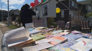 'The power of knowledge': Calgary man creates multicultural version of the little free library