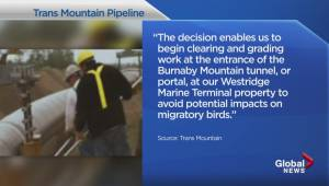 NEB approves some preconstruction on Trans Mountain pipeline project