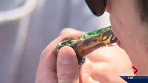 Mixed reviews for Federal Court marijuana decision