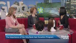 The importance of the Canadian Cancer Society wig bank
