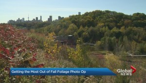 Taking in the fall colours – how to take great pictures.