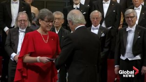 Canadian physicist Donna Strickland receives Nobel prize in physics
