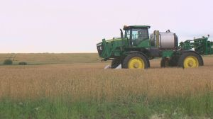 Proposed Seed Variety Use Agreement: implementing royalties for farm-saved seed