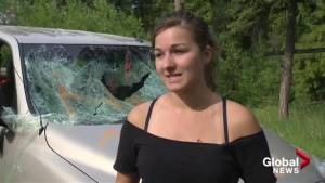 Vandals damage multiple vehicles on Kelowna property
