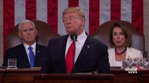 State of the Union: Trump praises ICE, pledges 'we will never abolish our heroes from ICE'