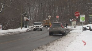 Debate continues over what to do with the road that cuts though Mount Royal