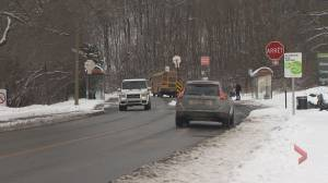 Debate continues over what to do with the road that cuts though Mount Royal (02:03)