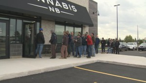 Cannabis NB CEO reports steady business as retail marijuana outlets open
