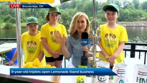 The Kane Kids Company lemonade stand