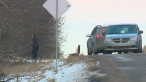 Body pulled from trees near road east of Edmonton