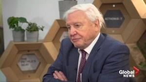 David Attenborough says U.S. 'out on a limb' on climate change