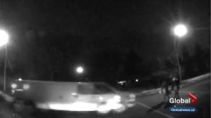 Police hope releasing graphic video of Edmonton hit and run will lead to arrest