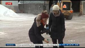 How Peterborough uses salt on the roads… and the harmful effects on the environment