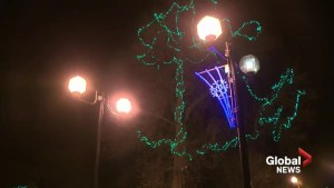 17th annual Bright Lights Festival kicks off holiday shopping with an emphasis on buying local