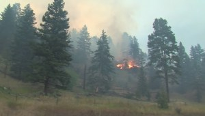 Monte Lake family loses dream home amid wildfires