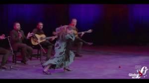 Preview of the Edmonton Flamenco Festival