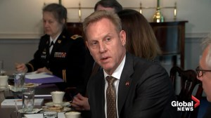 U.S. Defense Secretary Shanahan says $1.5B used to help build southern border wall