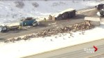 Aerial footage shows damage after semis crash on Alberta highway