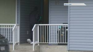Forensic expert testifies as Kelowna murder trial wraps up (01:03)