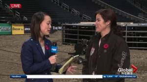 Learn about the bulls at the Edmonton PBR