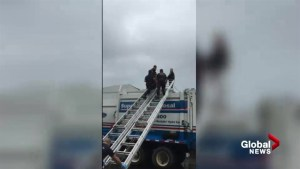 Raw video: Crews rescue woman trapped in garbage truck