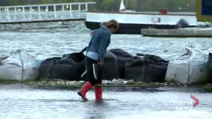 Strong winds cause high waves, flooding on Toronto island