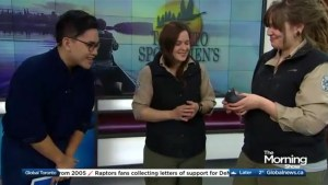 The Toronto Sportsmen's Show returns to the GTA