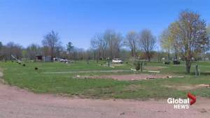 New Brunswick campgrounds feeling impact of recent flooding
