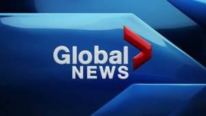 Global News at 530 Saturday June 8 2019