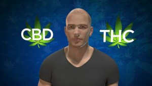 Health Series: THC vs CBD