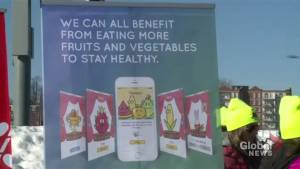 Dalhousie researchers launch kid-friendly healthy eating app
