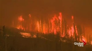 PTSD in first responders a concern as Fort McMurray wildfires continue: Experts