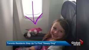 Thousands join search for child's missing stuffed animal