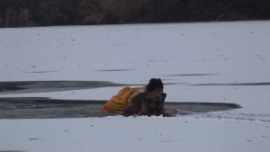 Illinois firefighter stages desperate rescue after dog falls through ice on frozen lake